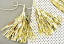 Gold Tassel with Twine