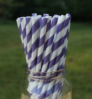 Eco-Friendly Paper Straws - Purple