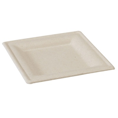 Square Brown Sugarcane Plate - 10 in. - Pack of 125