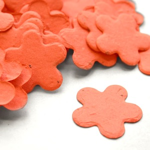 Five Petal Plantable Confetti - Coral - 350 Pieces