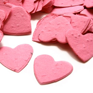 Heart Plantable Confetti - Hot Pink - 350 Pieces