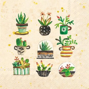 Succulents Cocktail Napkin - 20 napkins per package