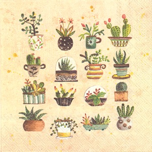 Succulents Lunch Napkin - 20 napkins per package