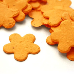 Five Petal Plantable Confetti - Marigold Yellow - 350 Pieces