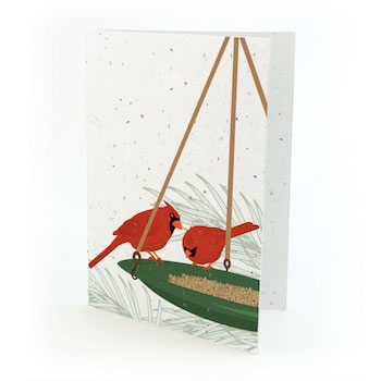 Plantable Cardinals Christmas Cards Set