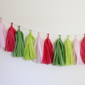 Preppy Tissue Paper Tassel Garland - 6' Long