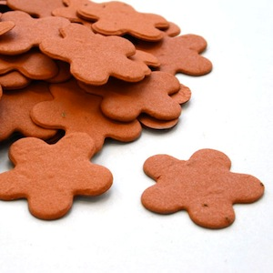 Five Petal Plantable Confetti - Burnt Orange - 350 Pieces
