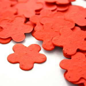 Five Petal Plantable Confetti - Tangerine - 350 Pieces
