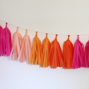 Bright Tissue Paper Tassel Garland - 6' Long