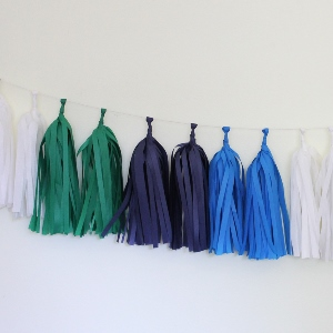 Modern Tissue Paper Tassel Garland - 6' Long