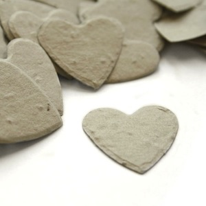 Heart Plantable Confetti - Dove Grey - 350 Pieces