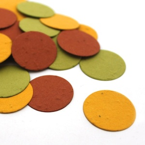 Autumn Circle Eco Confetti