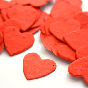 Heart Plantable Confetti - Tangerine - 350 Pieces