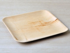 "10"" Square Palm Leaf Plate - Pack of 25-out of stock"