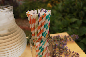 Eco-Friendly Paper Straws - Multiple Colors