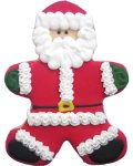 Santa Claus Party Favor Organic Cookie