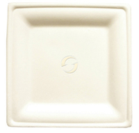 "Square 8"" x 8"" Sugarcane Plates - Pack of 100"