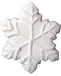 Winter Snowflake Party Favor Organic Cookie