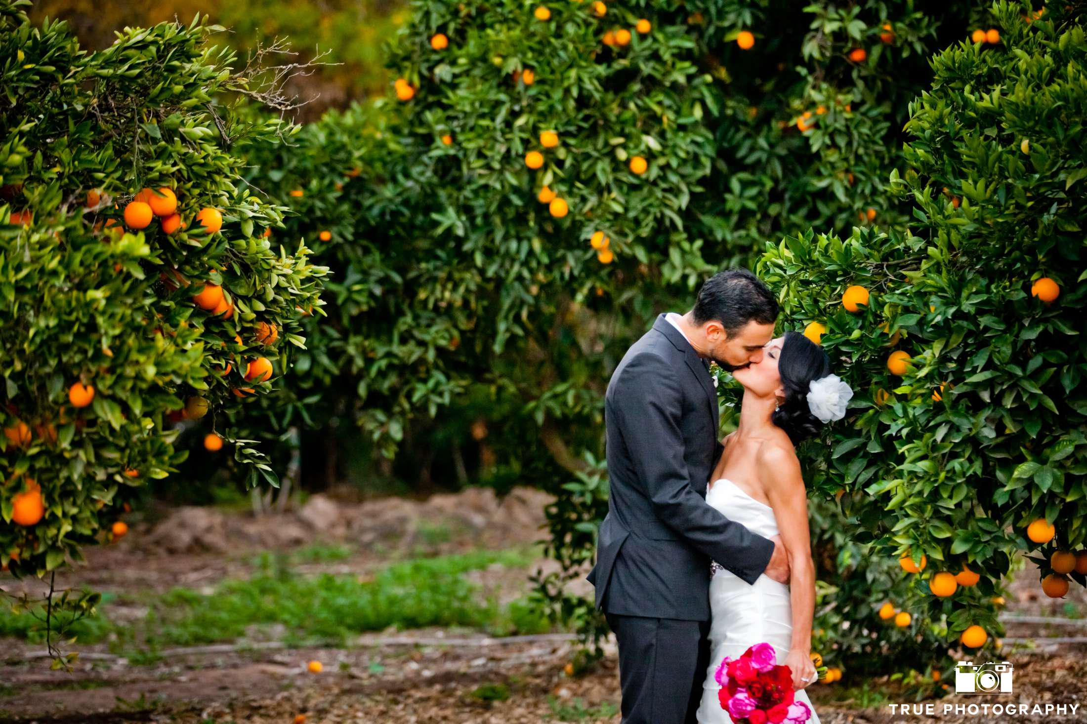 Citrus Wedding Decor Ideas Ecopartytime