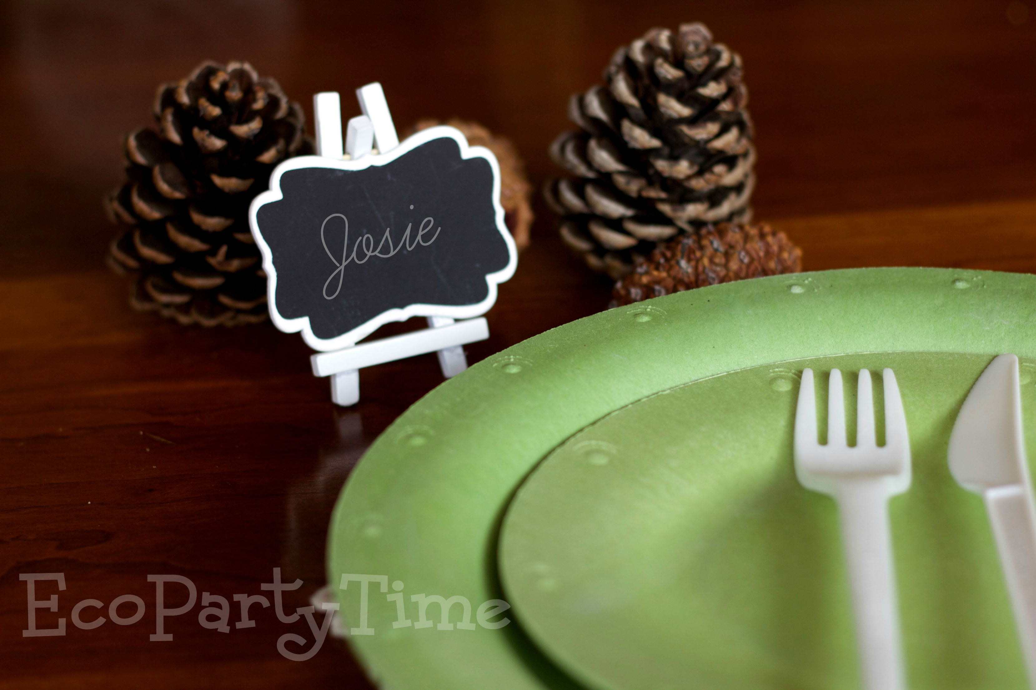 Ecopartytime: The Best Products for an Eco-Friendly Woodland Party