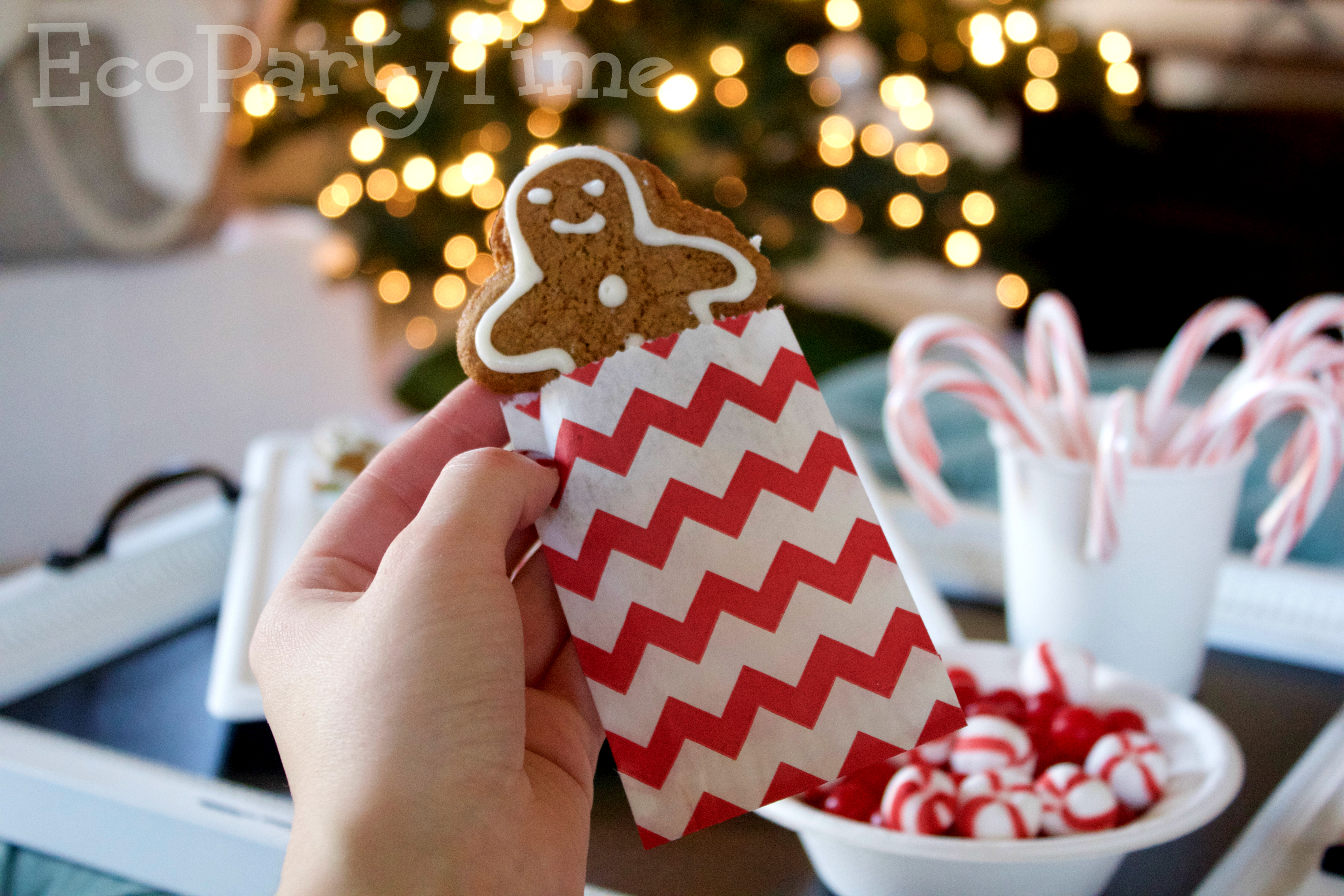 Ecopartytime: Gingerbread House Decorating Party