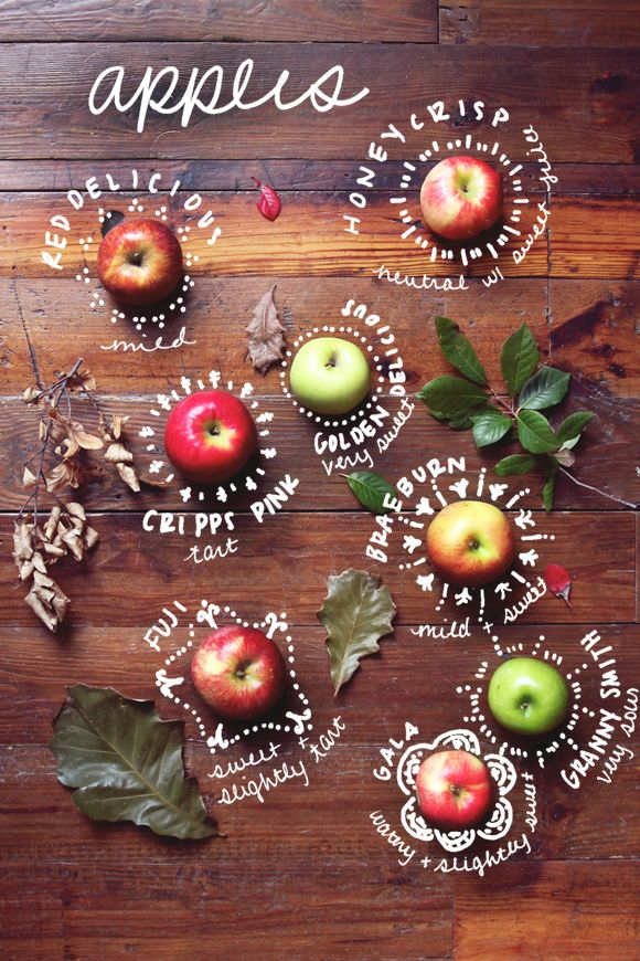 Sustainable Apple Wedding by Ecopartytime - Apple Types