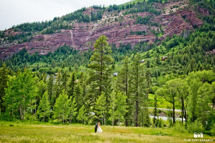 Earth Day Wedding Backdrop Ideas from Ecopartytime Majestic Mountain Backdrop