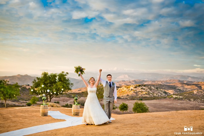 Earth Day Wedding Backdrop Ideas from Ecopartytime Desert Backdrop
