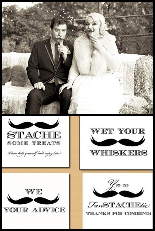 Mustache Wedding Props & Mustache Signs