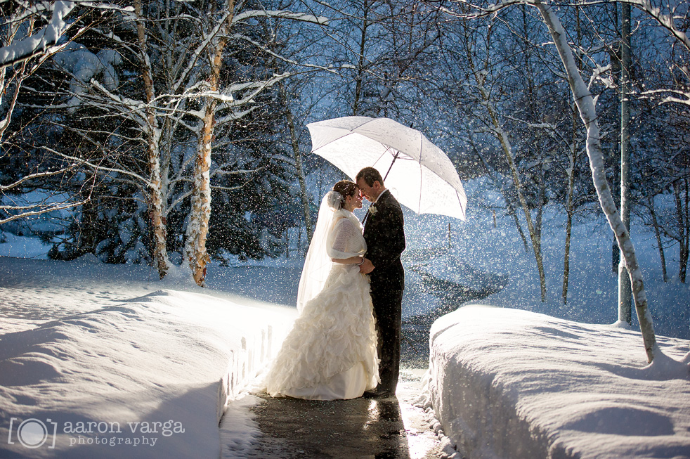 Eco-friendly Winter Wedding Themes from Ecopartytime - Photo Ideas