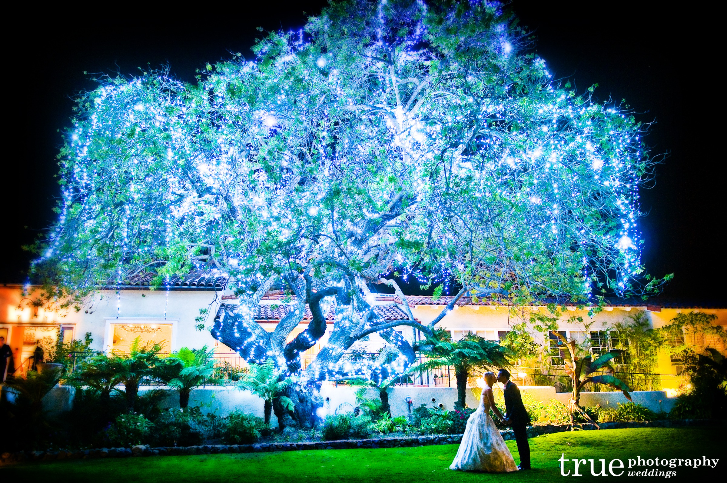 Eco-friendly Winter Wedding Themes from Ecopartytime -  Photo Backdrop